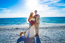 grand plaza, professional wedding photography, avstatmedia,